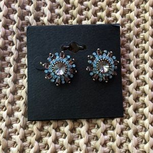 Powder Blue and Gray/Brown Earrings